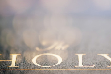 Image of the gold words 'The Holy' embossed on Bible cover